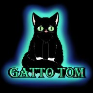 gatto tom
